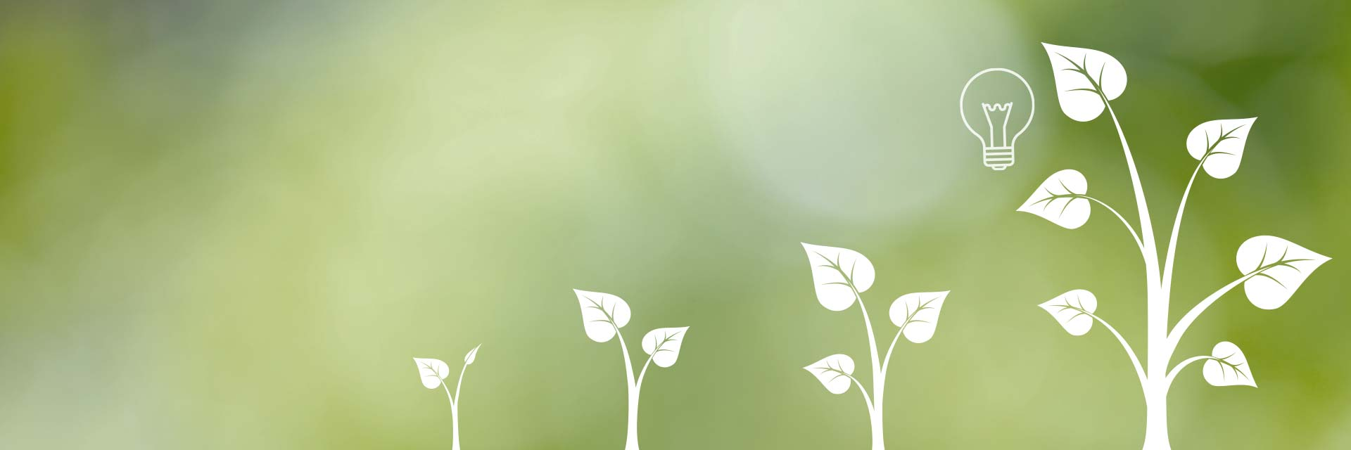 Konsultation säljutveckling illustrerat av små växter som blir större med en glödlampa för innovation vid det största