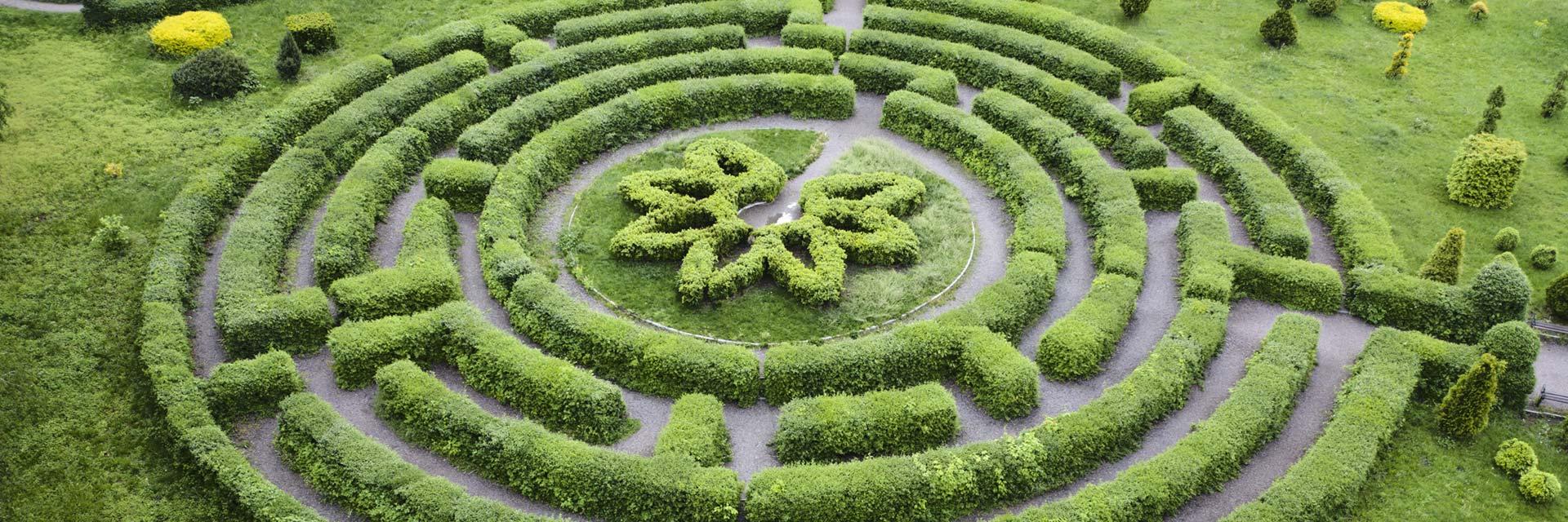 Välja coach illustrerat av en buxbom labyrint