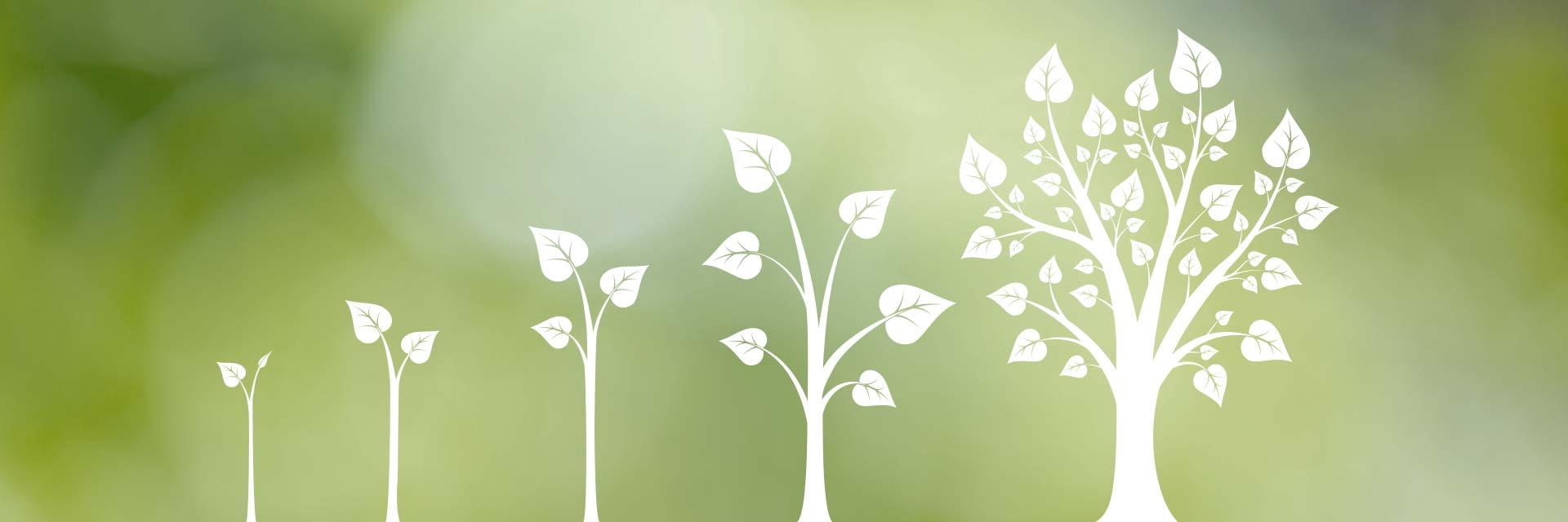 Säljcoach boostar försäljningen illustrerat av fem träd i olika grader av tillväxt